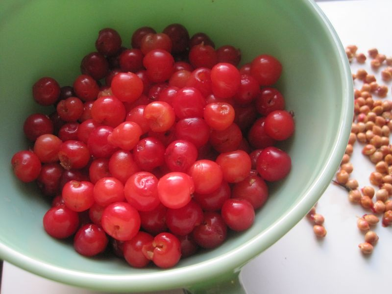 Cherries etc 006